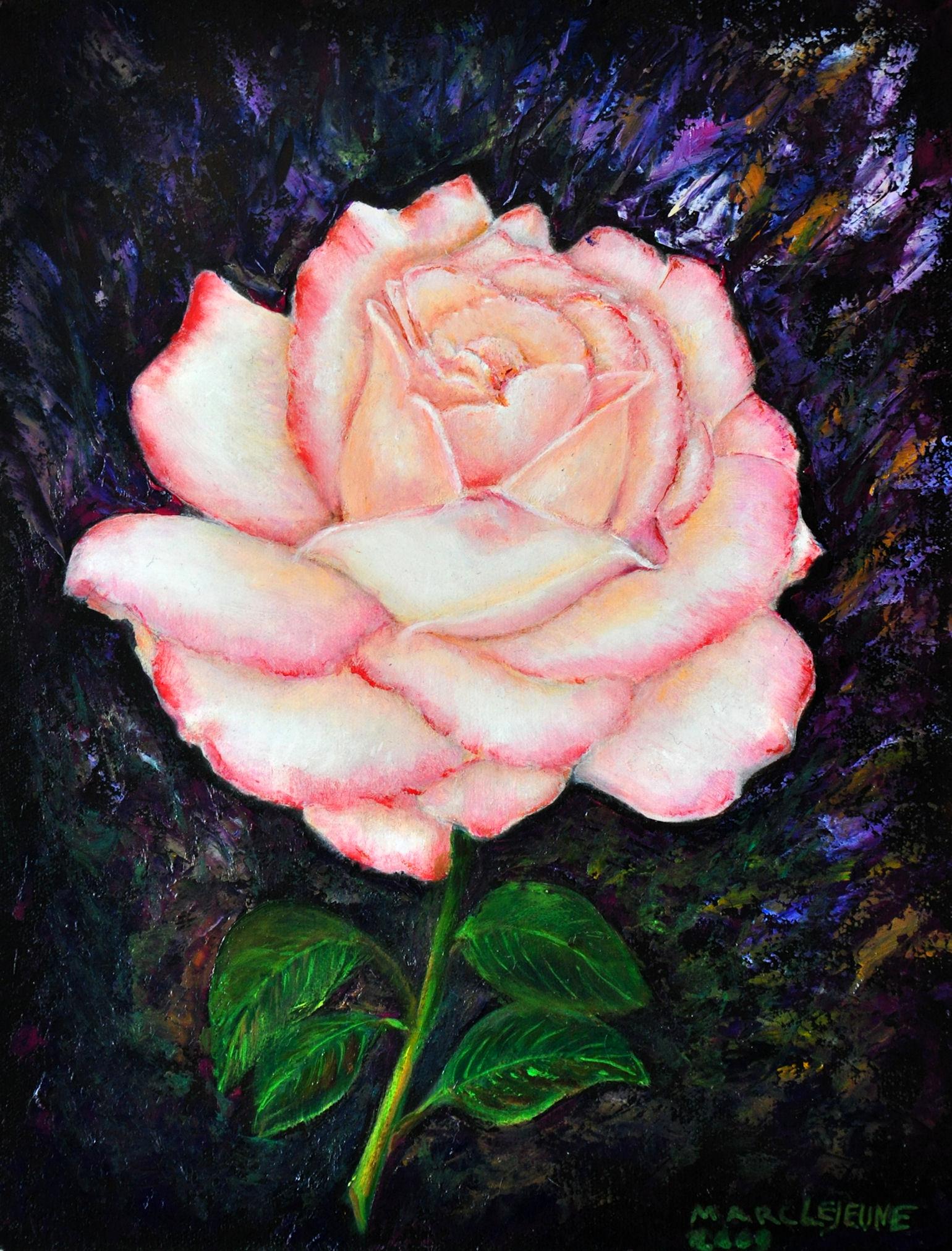 """Résultat de recherche d'images pour """"roses de californie"""""""